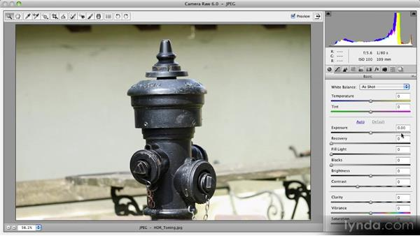 Adobe Camera Raw 6: Photoshop CS5 New Features Overview