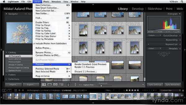 Previewing images: Getting Started with Lightroom 2