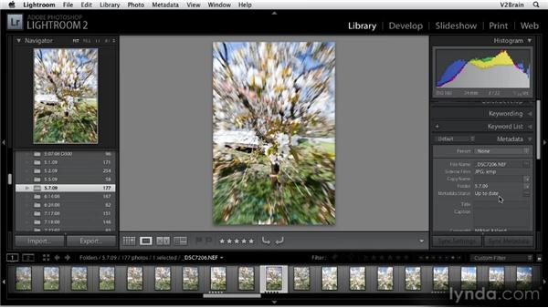 Using the Metadata panel: Getting Started with Lightroom 2