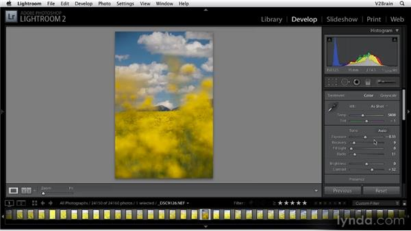 Using the Basic panel: Getting Started with Lightroom 2