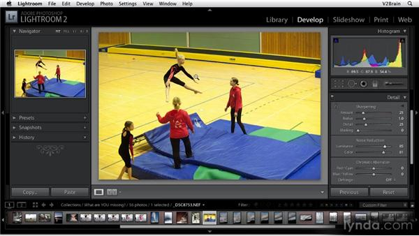 Using the Noise Reduction tool: Getting Started with Lightroom 2