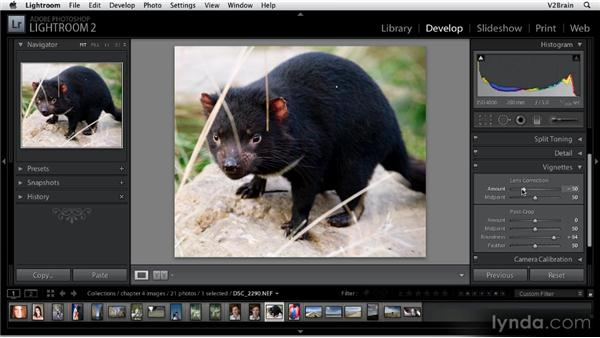 Using the Vignettes panel: Getting Started with Lightroom 2