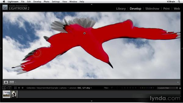 Using the Adjustment Brush: Getting Started with Lightroom 2