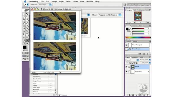 picture packages: Photoshop CS Essential Training