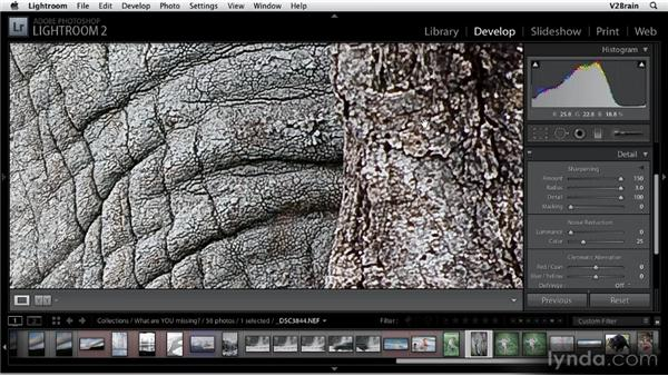Sharpening images: Getting Started with Lightroom 2