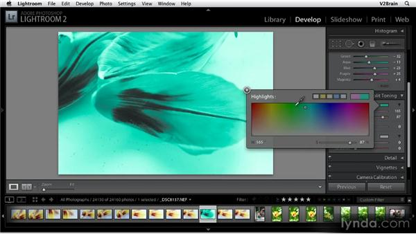 Using the Split Toning panel: Getting Started with Lightroom 2