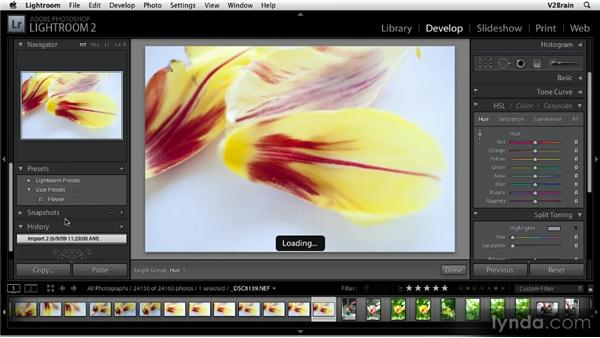 Creating and applying presets: Getting Started with Lightroom 2