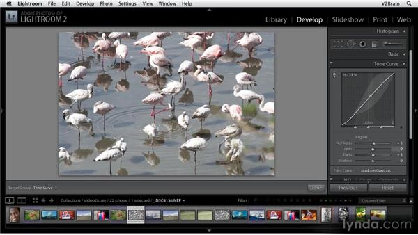 Using the Tone Curve panel: Getting Started with Lightroom 2
