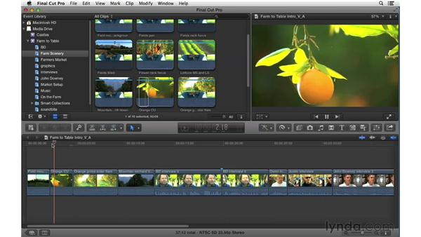 Performing video- and audio-only edits: Final Cut Pro X 10.0.9 Essential Training