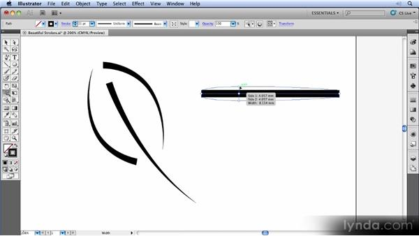 Variable-width strokes: Illustrator CS5 New Features Overview