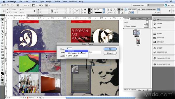 Multiple page sizes: InDesign CS5 New Features Overview