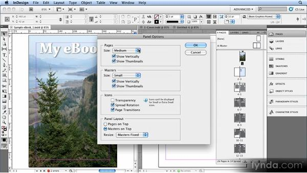 Using a book file to create chapter breaks: Creating Ebooks with InDesign CS4 or CS5