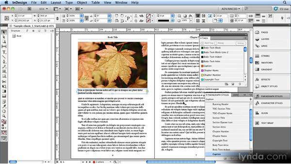 Using XML structure in InDesign CS5 to control reading order: Creating Ebooks with InDesign CS4 or CS5