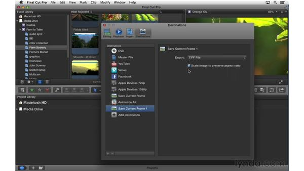 Exporting a still image: Final Cut Pro X 10.0.9 Essential Training