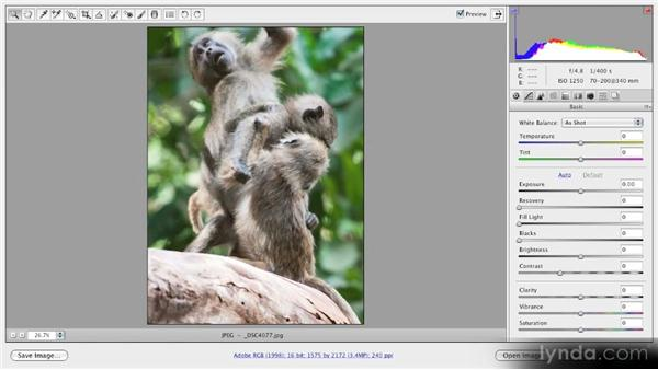 Opening JPEG and TIFF files in Camera Raw: Getting Started with Adobe Camera Raw 5