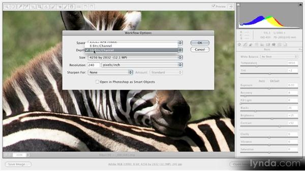 Camera Raw workflow options: Getting Started with Adobe Camera Raw 5