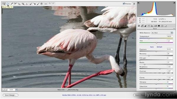 Navigation tools: Getting Started with Adobe Camera Raw 5