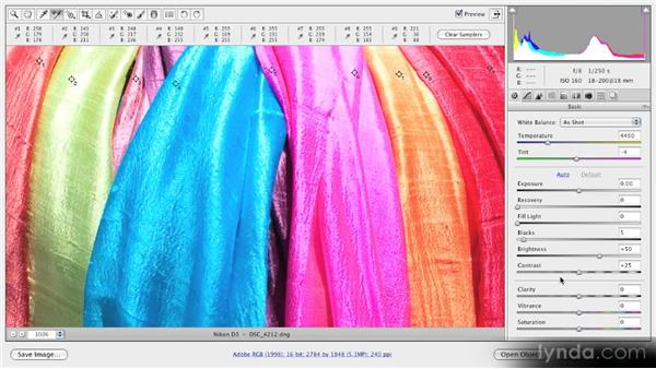 The Color Sample tool: Getting Started with Adobe Camera Raw 5