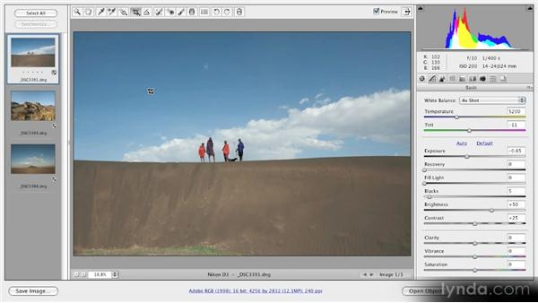The Crop tool: Getting Started with Adobe Camera Raw 5
