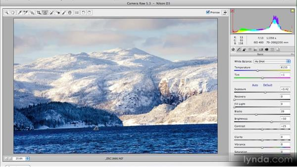 The Straighten tool: Getting Started with Adobe Camera Raw 5