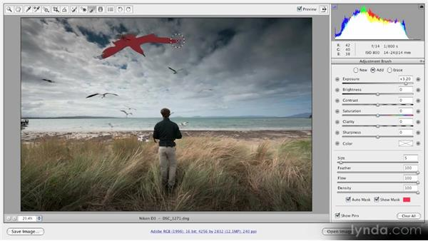 Using the Adjustment Brush and Graduated Filter tools together: Getting Started with Adobe Camera Raw 5