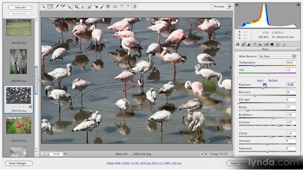 Understanding and using previews: Getting Started with Adobe Camera Raw 5
