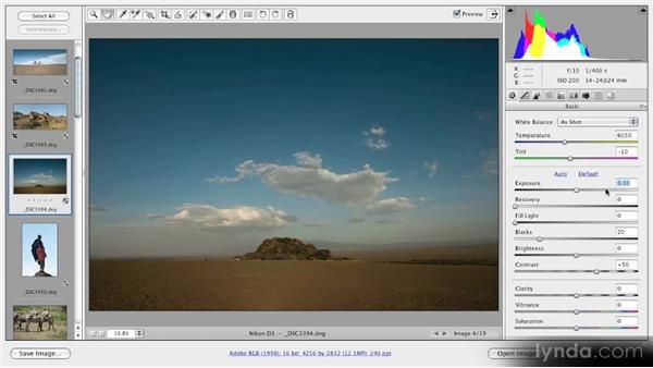 Analyzing images using the Histogram panel: Getting Started with Adobe Camera Raw 5
