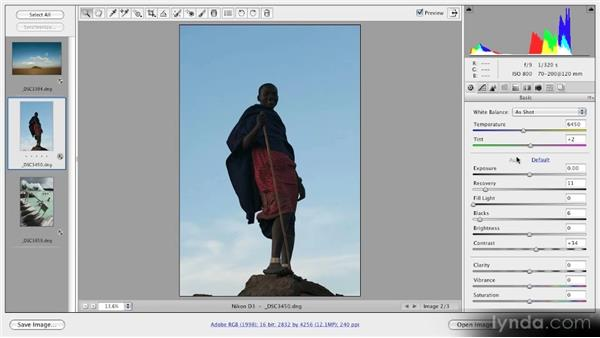 When to use Auto Tone: Getting Started with Adobe Camera Raw 5
