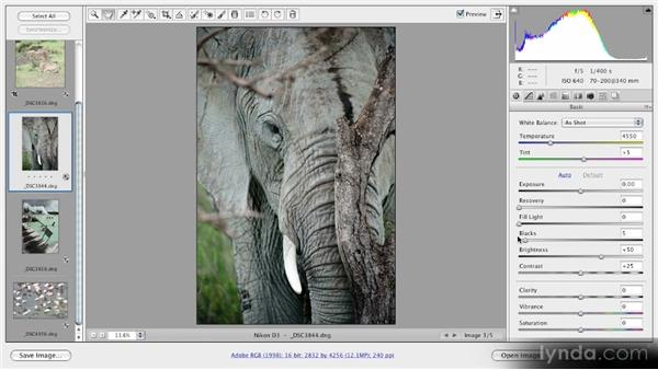 Using the Blacks slider: Getting Started with Adobe Camera Raw 5