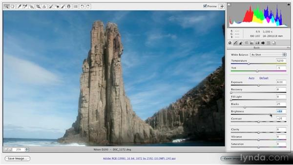 Using the Brightness and Contrast sliders: Getting Started with Adobe Camera Raw 5