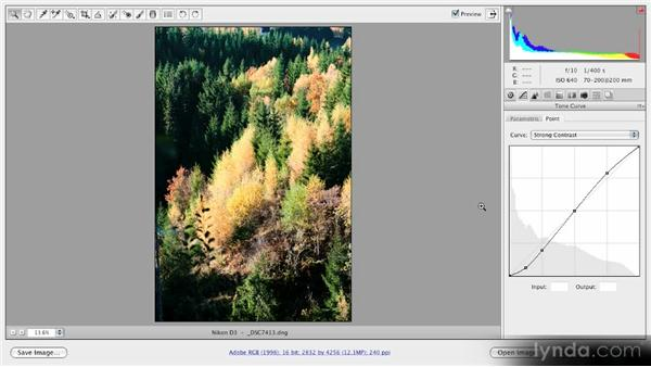 Using the parametric and point curves: Getting Started with Adobe Camera Raw 5