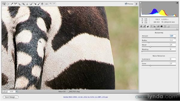 Sharpening: Getting Started with Adobe Camera Raw 5