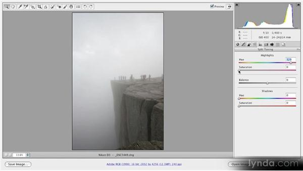 Creating a split-toned image: Getting Started with Adobe Camera Raw 5