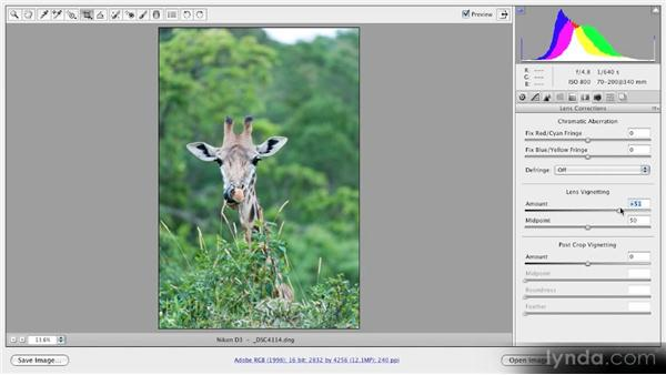 Vignetting: Getting Started with Adobe Camera Raw 5