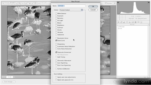 Creating and applying custom presets: Getting Started with Adobe Camera Raw 5