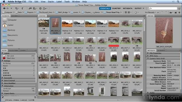 Sorting: 11 Tricks for Faster Photo Processing with Bridge and Photoshop