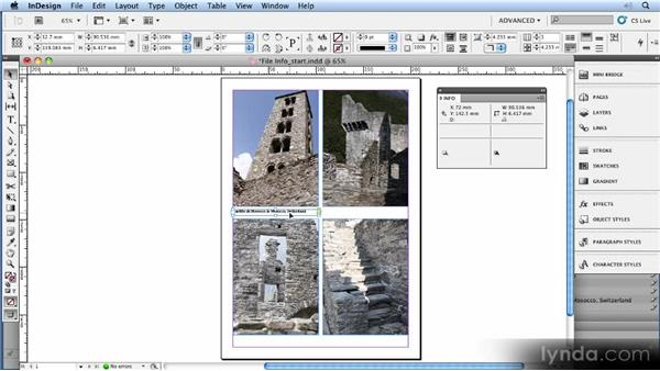 Reading and extracting file info: 11 Tricks for Faster Photo Processing with Bridge and Photoshop