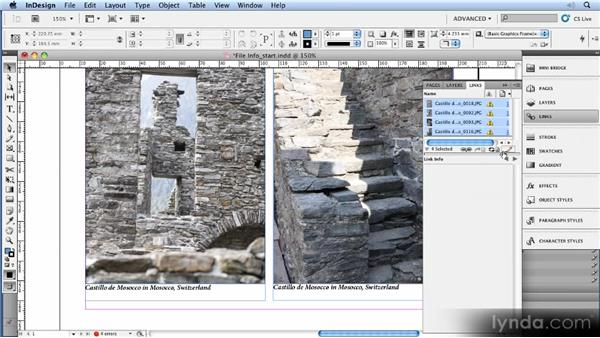 Using live and static captions: 11 Tricks for Faster Photo Processing with Bridge and Photoshop