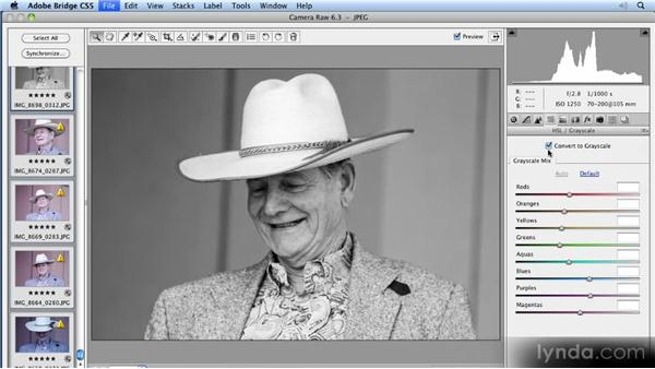 Introducing the Camera Raw filter: 11 Tricks for Faster Photo Processing with Bridge and Photoshop