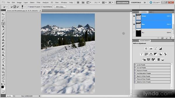 Saving a selection: Photoshop Selections Workshop