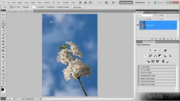 The Magic Wand tool: Photoshop Selections Workshop