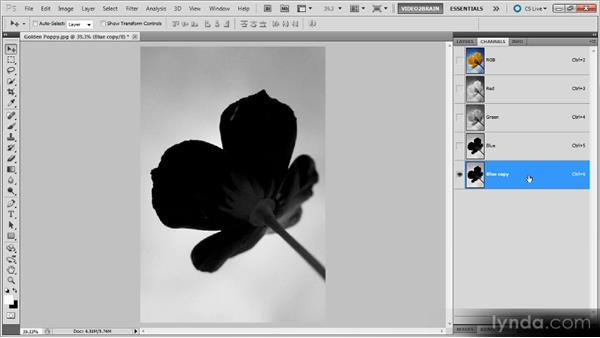 Selecting from a channel: Photoshop Selections Workshop