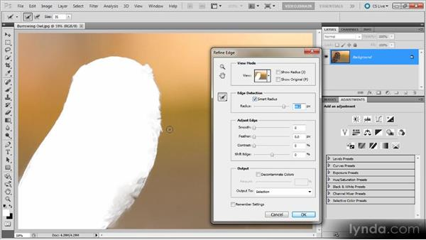 The Refine Edge command: Photoshop Selections Workshop