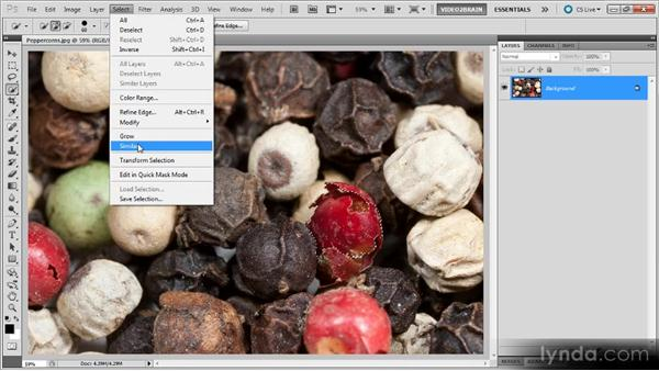 The Grow and Similar commands: Photoshop Selections Workshop