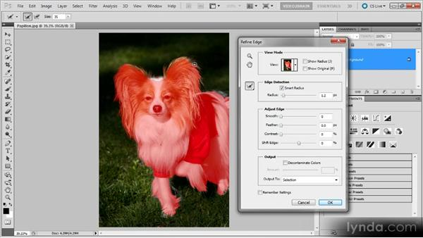 Selecting fur: Photoshop Selections Workshop