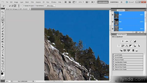 Selecting a tree-lined sky: Photoshop Selections Workshop