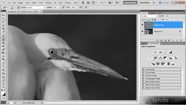 Dodging and burning: Photoshop Black-and-White Workshop