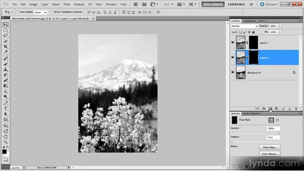 : Photoshop Black-and-White Workshop