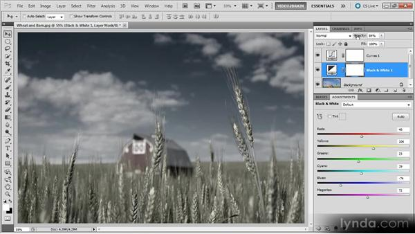 A landscape: Photoshop Black-and-White Workshop