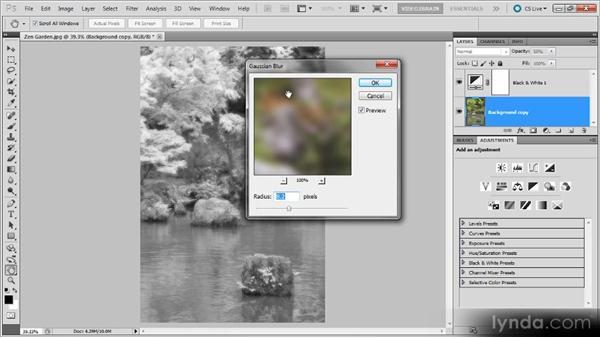 An infrared zen garden: Photoshop Black-and-White Workshop